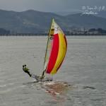Regatas en la Bahía de Santander