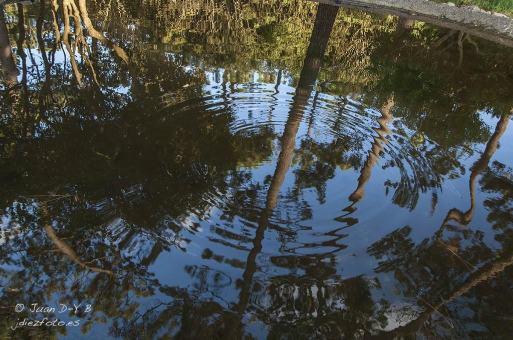Ondas en el estanque secreto de la Península de la Magdalena