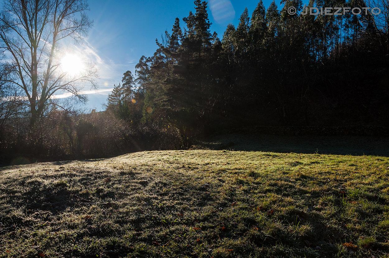 Rocio sobre los pastos de Barcenillas