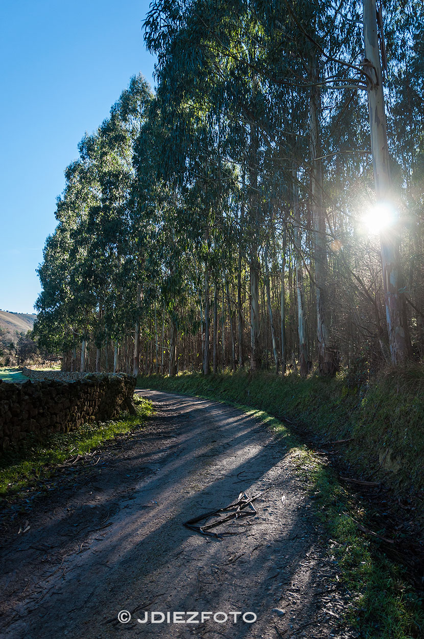 Amanecer camino Lamiña Cantabria