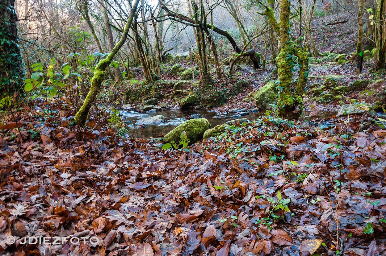 Otoño en Lamiña Cantabria