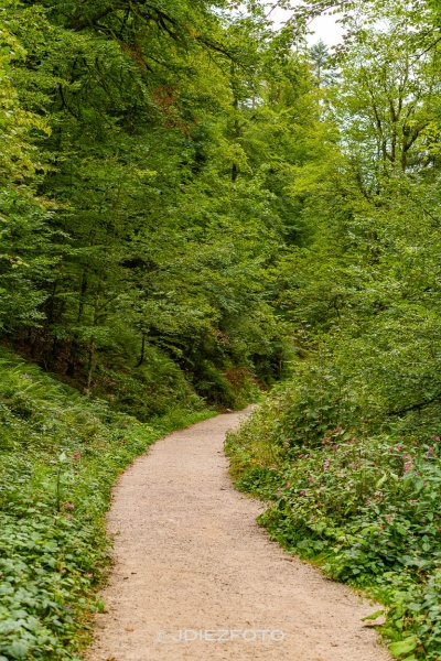 Paseo a la Cascada de Allerheiligen
