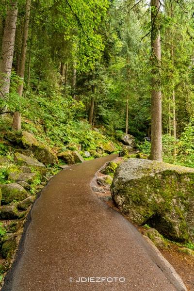 Parque de las ardillas en Triberg