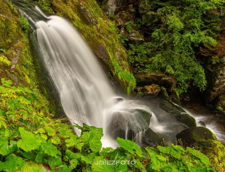 Cascada de Triberg. Selva Negra