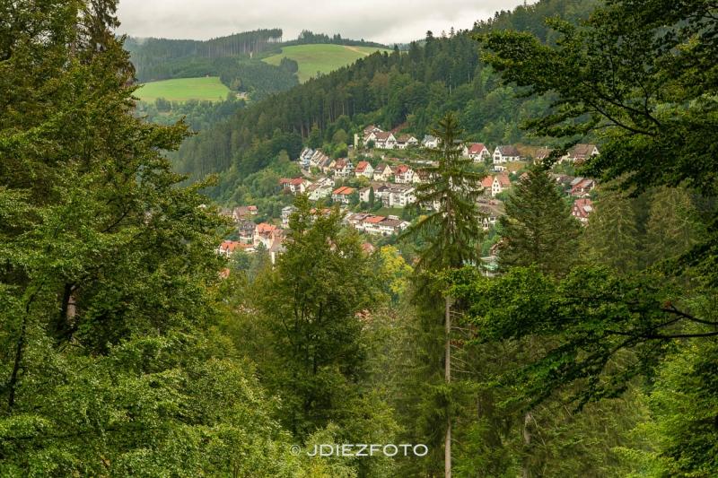 Vistas de Triberg desde el Parque de las ardillas