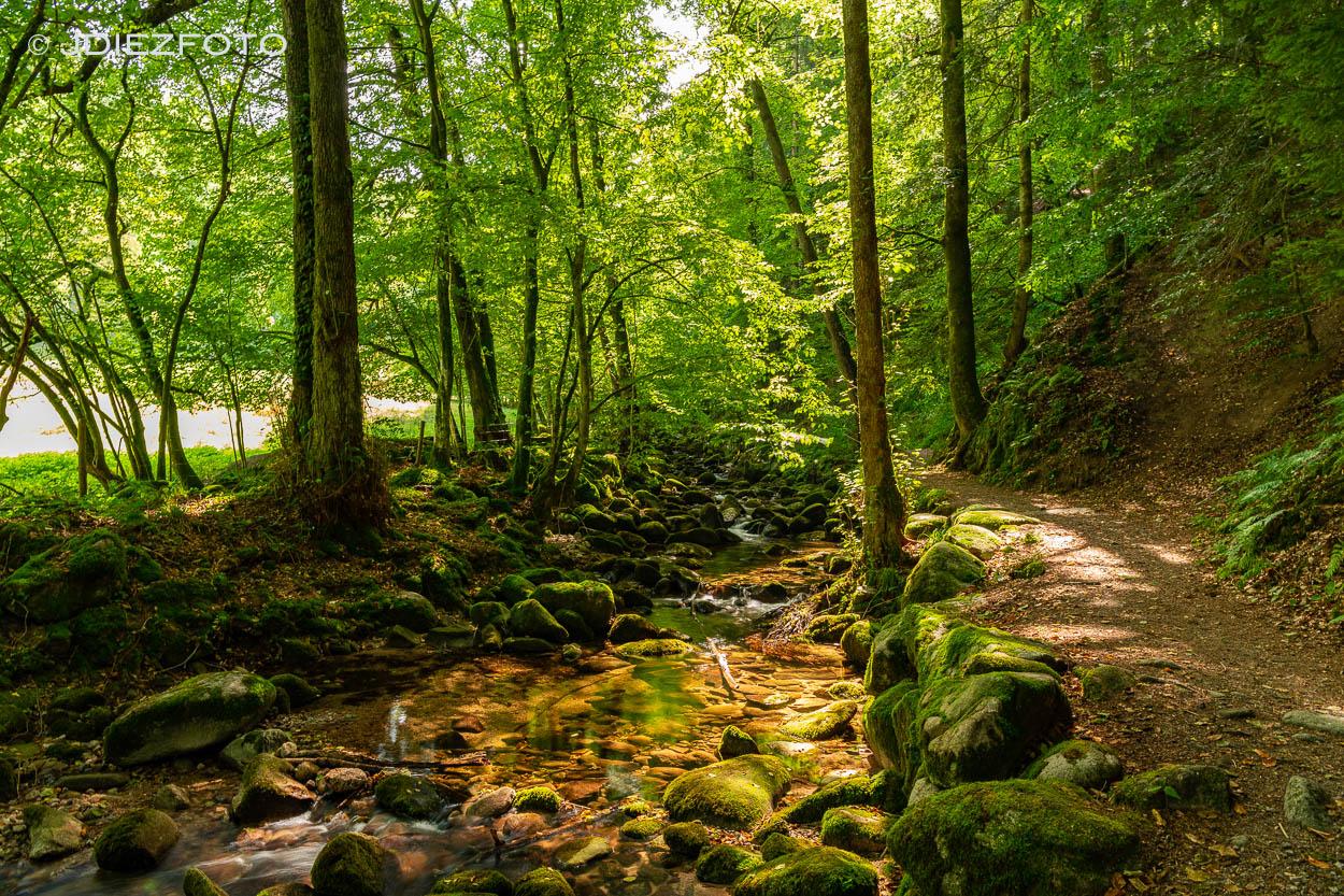 Río de la Cascada Geroldsauer