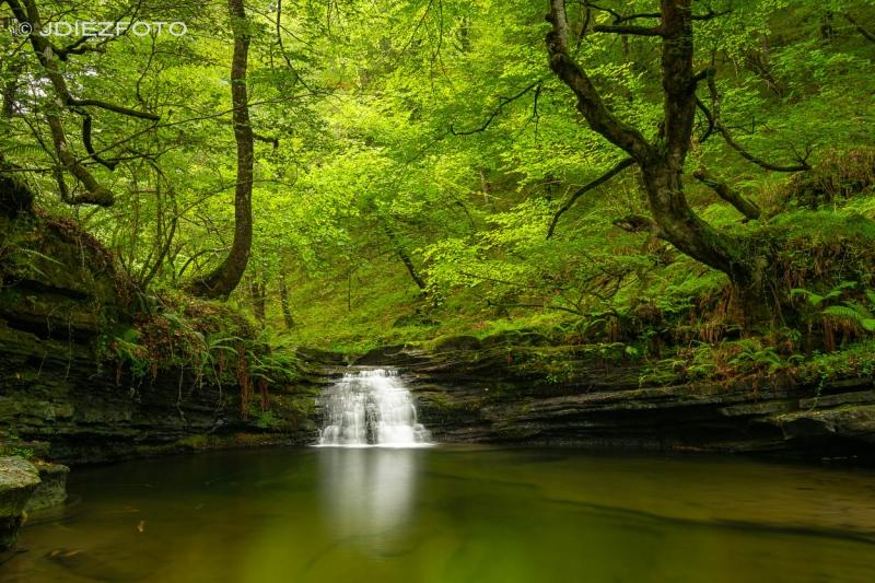 Cascadas del arroyo Viaña