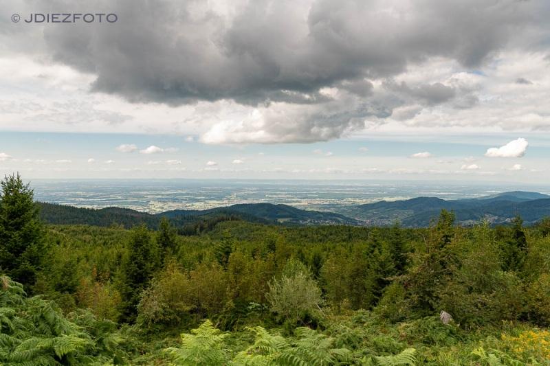 Selva Negra desde el Lago Mummelsee