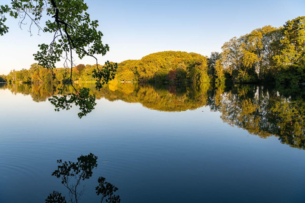 Lago Parc de la Tête d'Or
