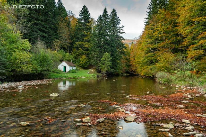 Colores del otoño en el río Irati. Selva de Irati