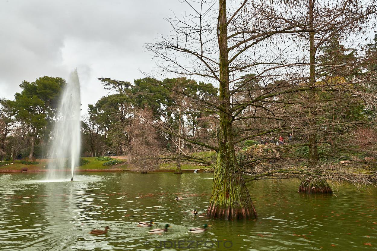 Estanque del Palacio de Cristal. Parque del Retiro