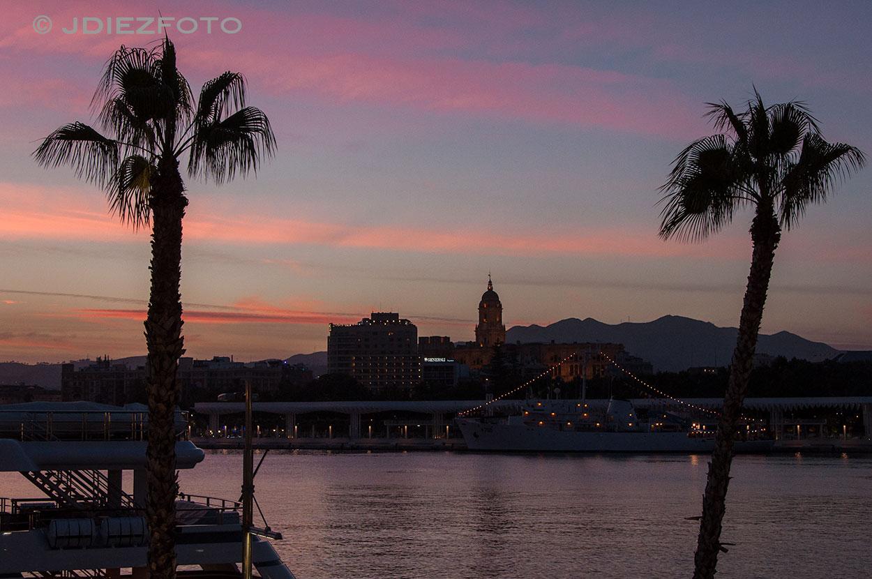 Palmeral Puerto de Málaga