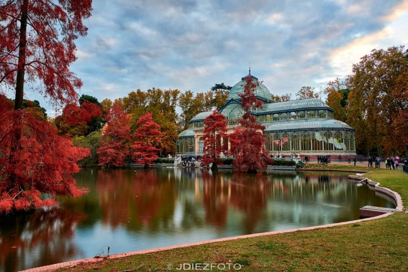 Puesta de sol Palacio de Cristal. Parque del Retiro