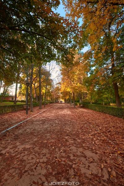 Otoño Parque del Retiro