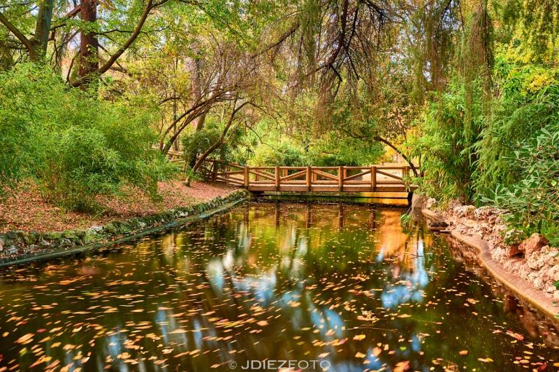 Reflejos en los puentes del Parque del Retiro