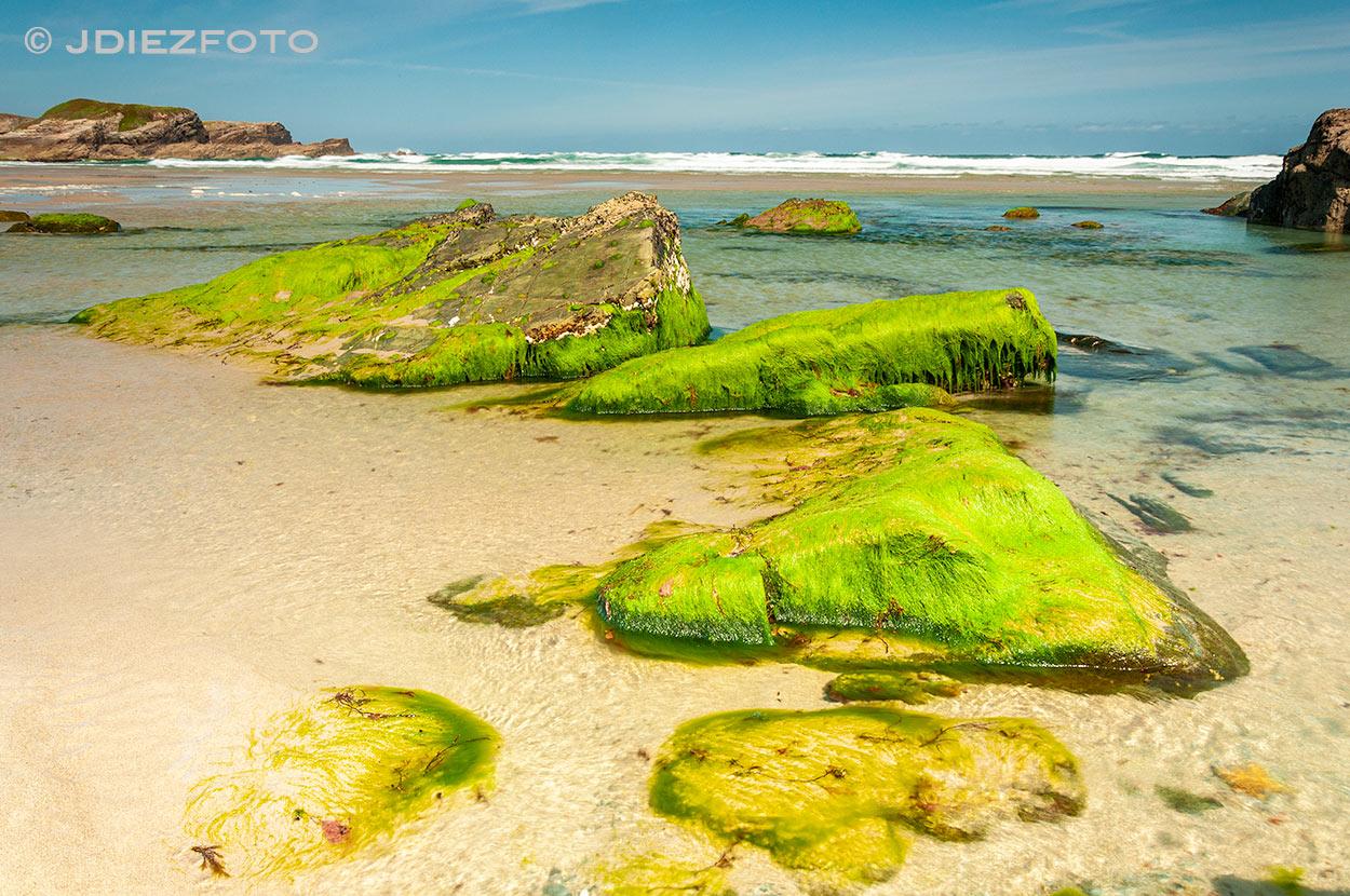 Praia Os Castros