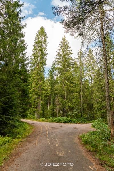 Ruta por Sankenbach