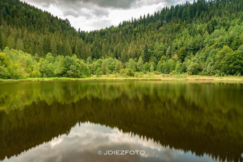 Lago de Sankenbach. Selva Negra