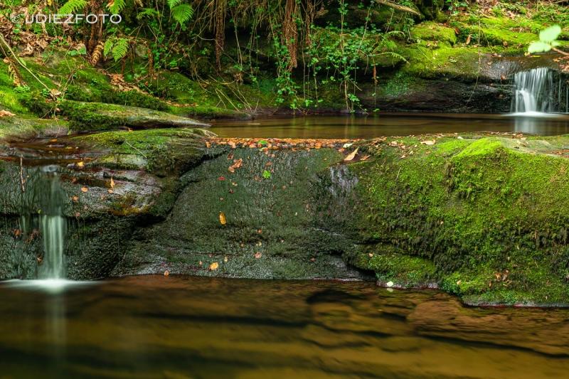 Senda Fluvial Canal de Tejera