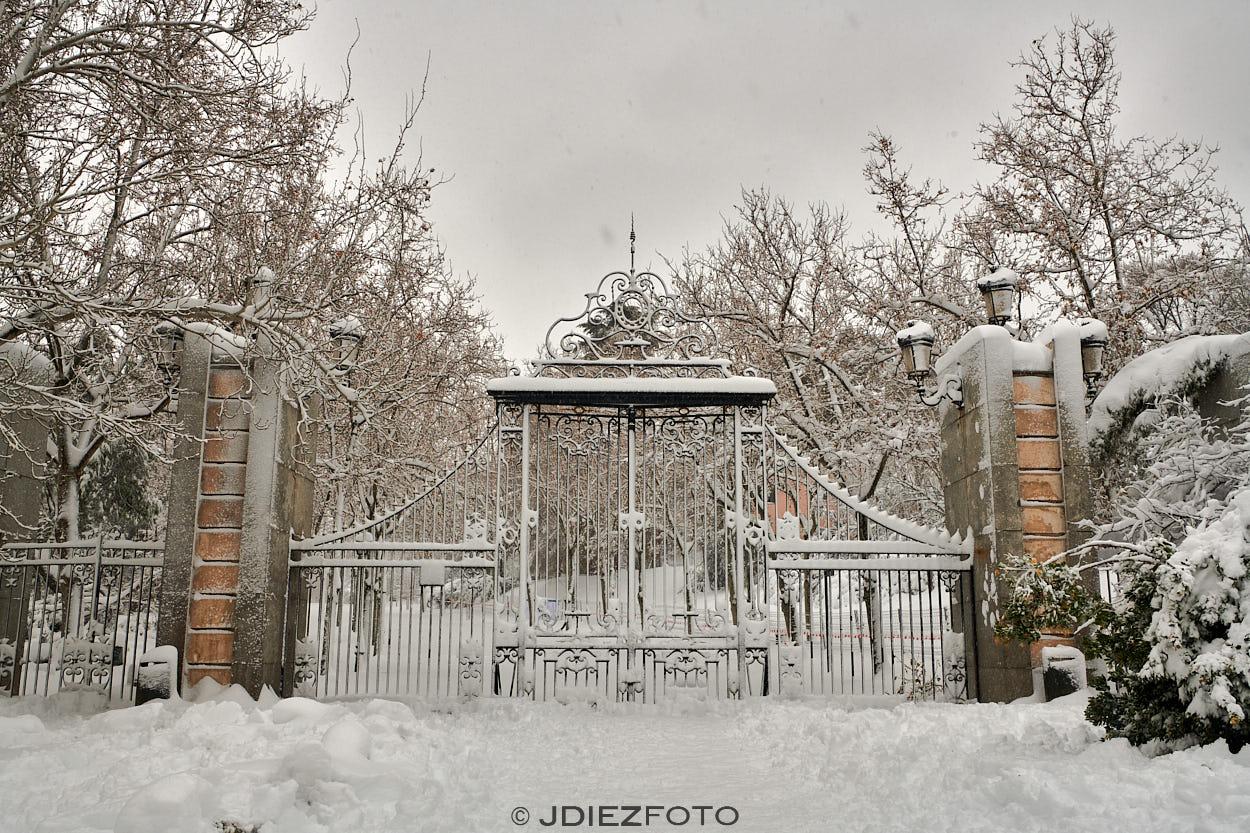 Grandes nevadas en el Retiro por Filomena