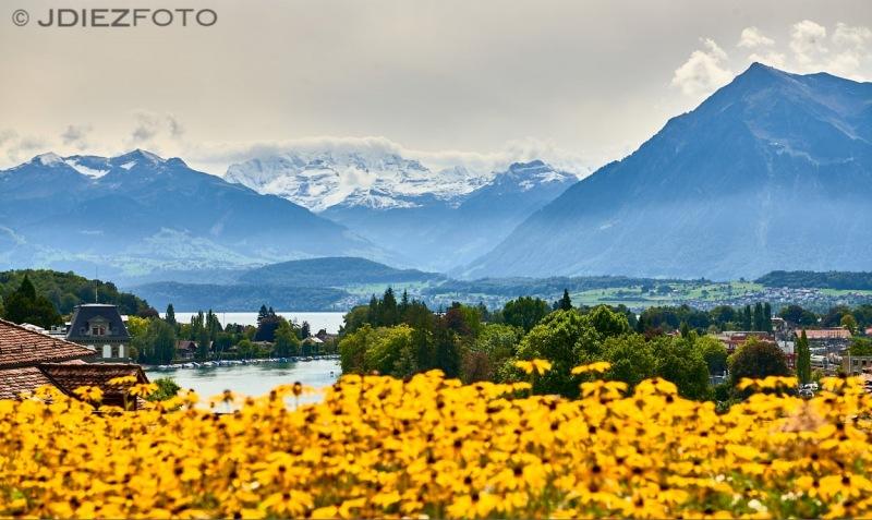 Vistas del Lago Thun desde el Castillo de Thun