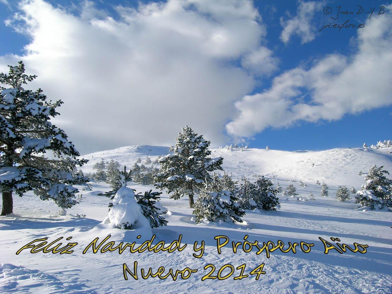 ¡ Feliz Navidad y Próspero Año Nuevo 2014 !