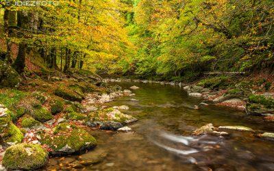 Colores del otoño a orillas del Río Irati