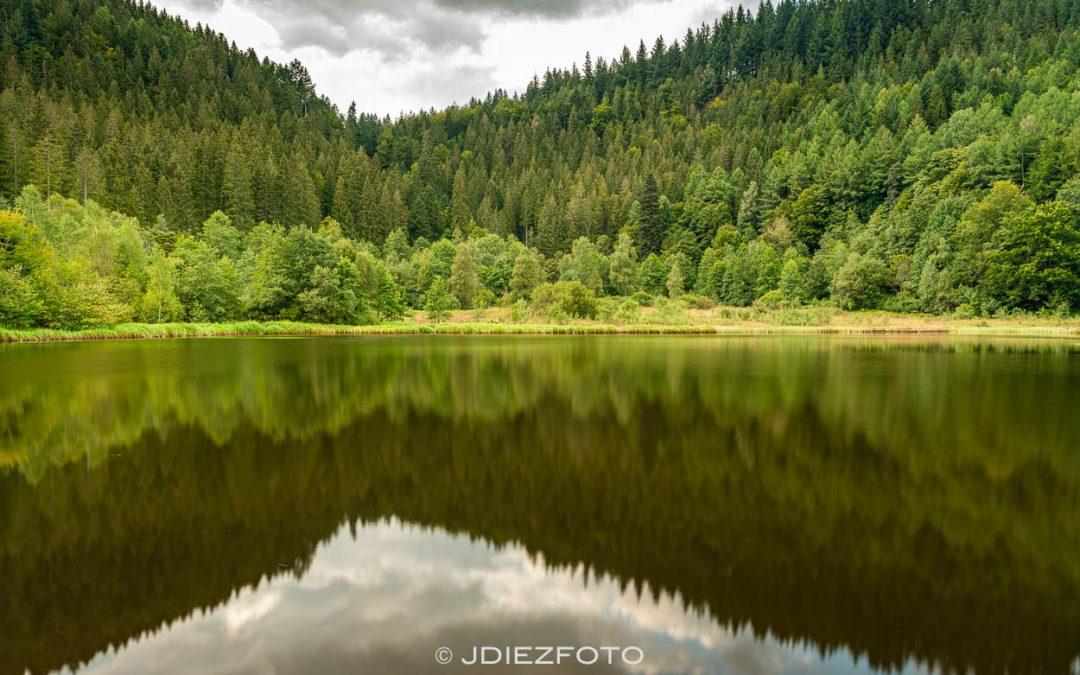 Ruta al lago Sankenbach en la Selva Negra