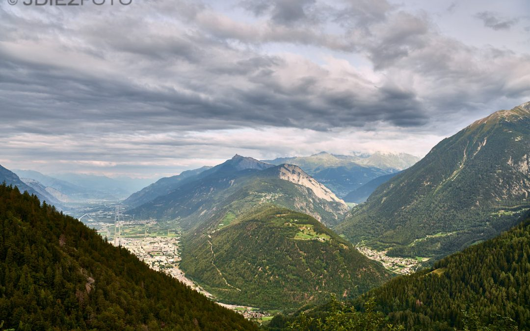 Viñedos de Vallée du Rhône
