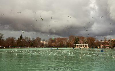 Momentos previos a la lluvia en el estanque del Parque del Retiro