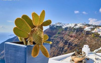 Recorrido por Imerovigli y Fira en Santorini