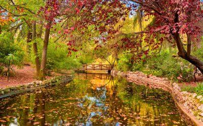 Reflejos otoñales en los puentes del Parque del Retiro
